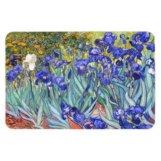 Vincent Van Gogh Irises Floral Vintage Fine Art Rectangular Photo Magnet