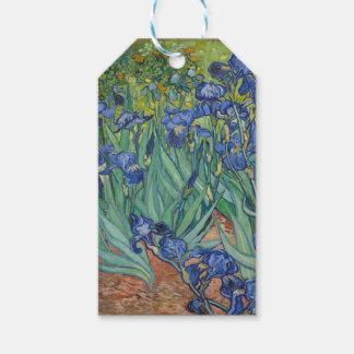 Vincent Van Gogh Irises Painting Flowers Art Work