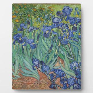 Vincent Van Gogh Irises Painting Flowers Art Work Plaque