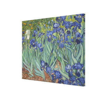 Vincent Van Gogh Irises Stretched Canvas Prints