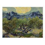 Vincent van Gogh - Landscape with Olive Trees Postcards