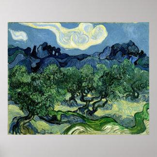 Vincent van Gogh s Olive Trees 1889 Poster