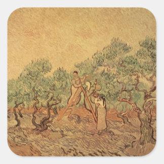 Vincent van Gogh | The Olive Grove, 1889 Square Sticker