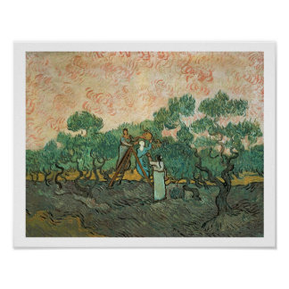 Vincent van Gogh | The Olive Pickers, Saint-Remy Poster