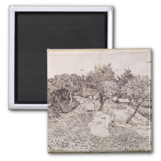 Vincent van Gogh | The Olive Trees Square Magnet