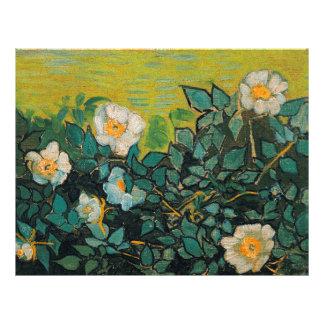 Vincent Van Gogh Wild Roses Vintage Floral Art Flyers