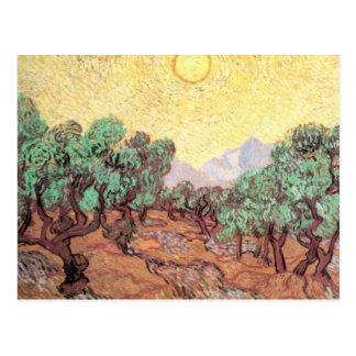 Vincent VanGogh - Olive Grove Postcard