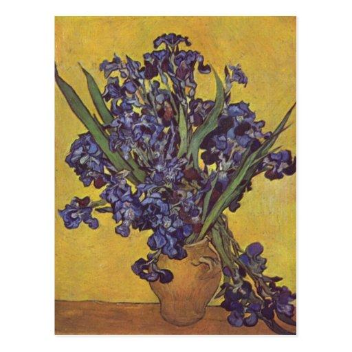 Vincent Willem Van Gogh Iris flowers Post Cards