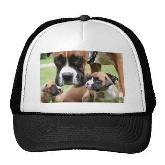 Vindy and Pups - Photo 09 Cap