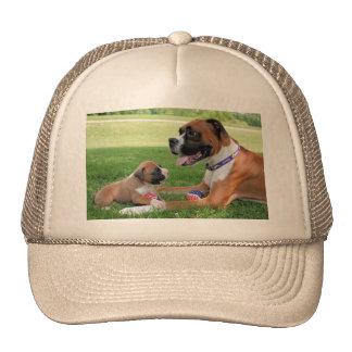 Vindy and Pups - Photo 95 Cap