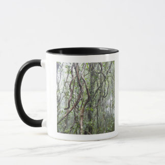 vine and branches twisted in rainforest mug