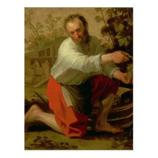 Vine Grower, 1628 Postcard