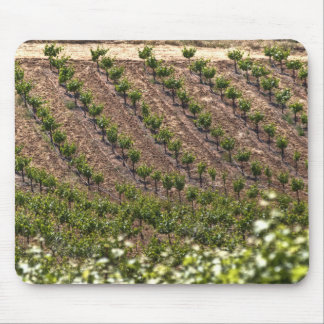 Vines In Field Mouse Pad