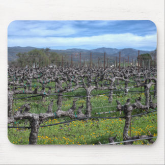 Vines In Winter Napa California Mousepads