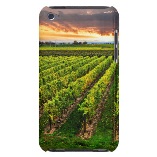 Vineyard at sunset iPod touch cover