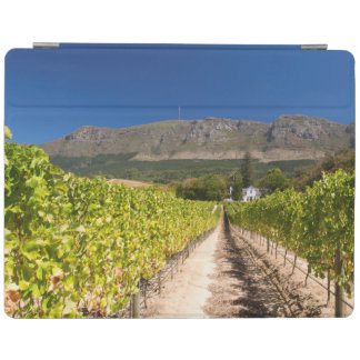 Vineyard, Cape Town, Western Cape, South Africa 2 iPad Cover