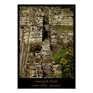 vineyard climb poster
