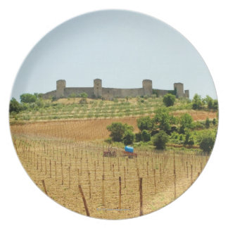 Vineyard in front of a fort, Monteriggioni, Plate