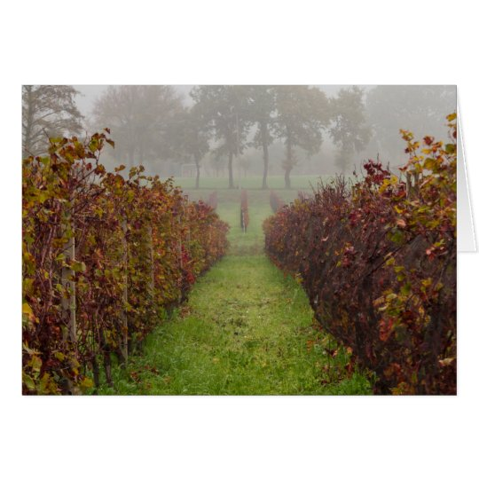 vineyard in the fog in autumn card