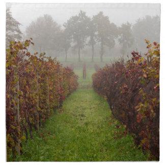 vineyard in the fog in autumn napkin