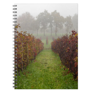 vineyard in the fog in autumn notebook