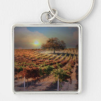 Vineyard Key Ring Silver-Colored Square Key Ring