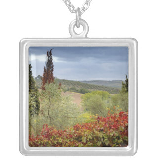 Vineyard near Montalcino, Tuscany, Italy Silver Plated Necklace
