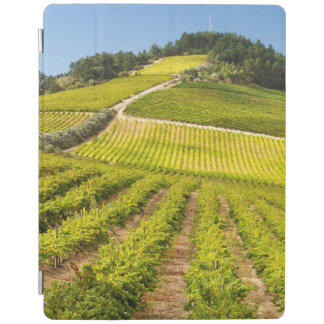 Vineyard, Stellenbosch, Western Cape iPad Cover