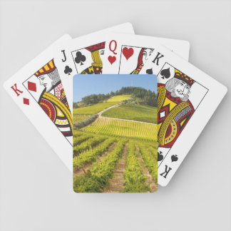 Vineyard, Stellenbosch, Western Cape Playing Cards