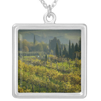 Vineyard, Tuscany, Italy Silver Plated Necklace