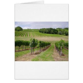 Vineyard - Vignoble Bordeaux - France 03 Cartes De Vœux