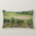 Vineyard - Vignoble (Bordeaux - France) 03 Oreillers