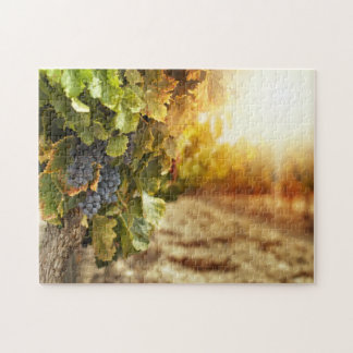 Vineyards At Sunset Jigsaw Puzzle