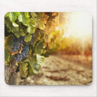 Vineyards At Sunset Mouse Mat