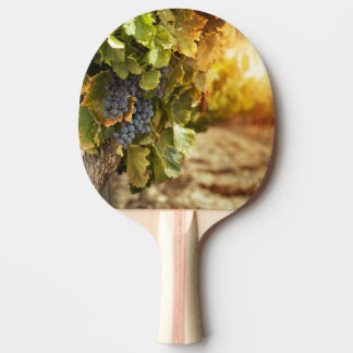 Vineyards At Sunset Ping Pong Paddle