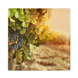 Vineyards At Sunset Wood Coaster