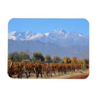 Vineyards In The Fall Of Mendoza, Argentina Magnet