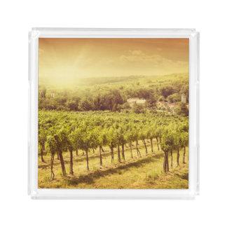 Vineyards Landscape