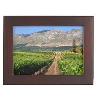 Vineyards Of Groot Constantia Wine Estate Keepsake Box