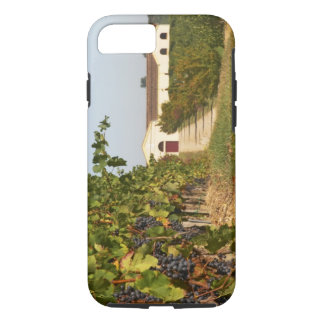 Vineyards, petit verdot vines and the winery in iPhone 8/7 case