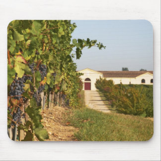 Vineyards, petit verdot vines and the winery in mouse pad