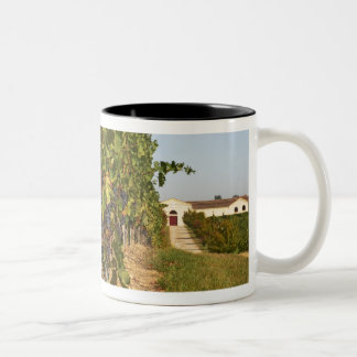Vineyards, petit verdot vines and the winery in Two-Tone coffee mug