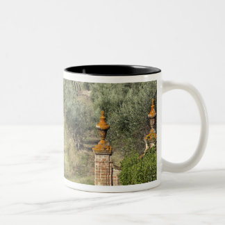 Vineyards, Tuscany, Italy Two-Tone Coffee Mug
