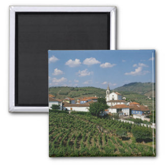 Vineyards, Village of San Miguel, Douro Magnet