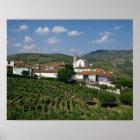 Vineyards, Village of San Miguel, Douro Poster