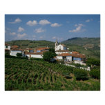 Vineyards, Village of San Miguel, Douro Poster