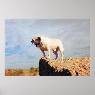 Vinny the Pug Huge Poster