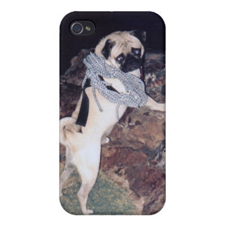 Vinny the Pug IPhone 4/4s Hard Cover iPhone 4/4S Cases