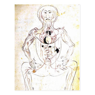 Vintage 13th Century Persian Medical Front Anatomy Postcard