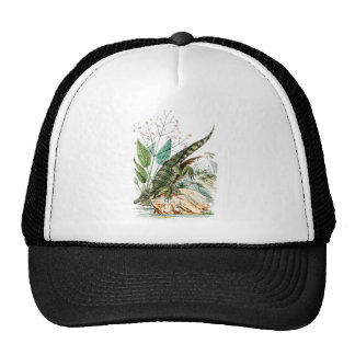 Vintage 1800s Alligator Crocodile Illustration Cap